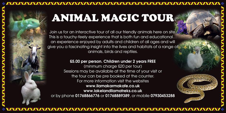 Animal Magic Tour