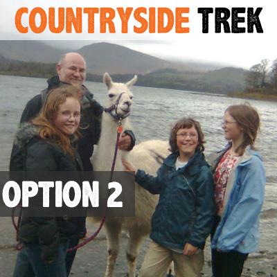 countryside-llama-trek