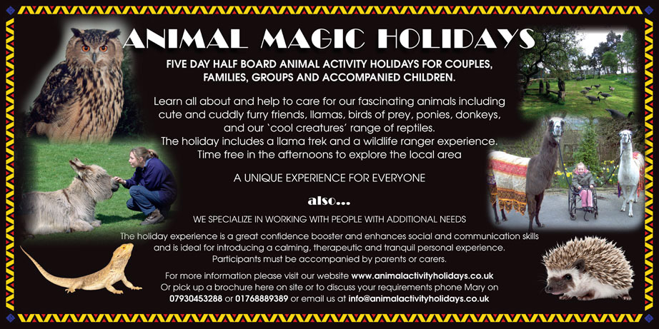 Animal Magic Holidays