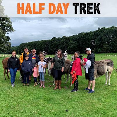 Half Day Trek - Lakeland Llama Treks
