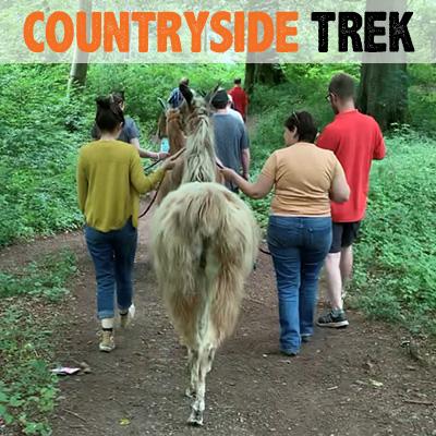 Countryside Trek - Lakeland Llama Treks