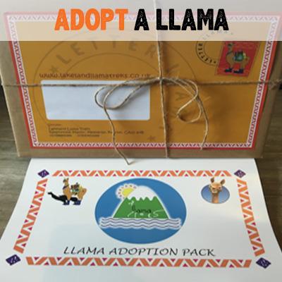 adopt-a-llama