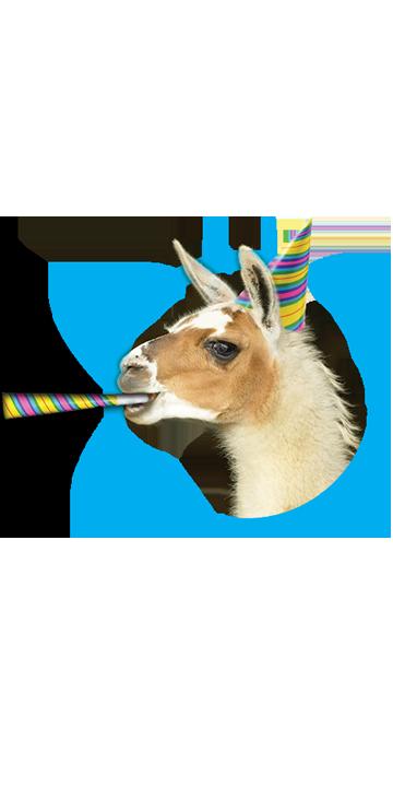 llama-trek-character