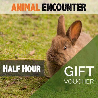 Half Hour Animal Encounter Voucher