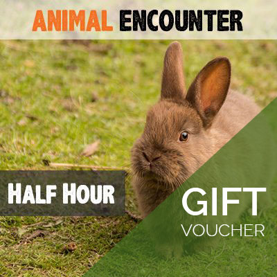 Half Hour Animal Encounter Voucher