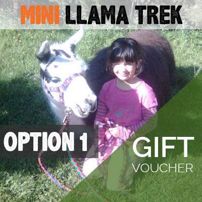 Mini Llama Trek Gift Voucher