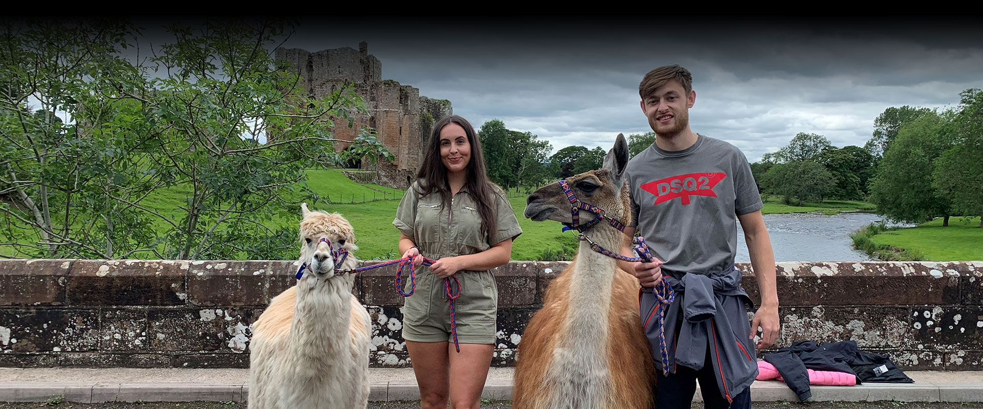Lakeland Llama Treks & Trekking